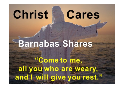 Stapline - Christ Cares St. Barnabas Shares